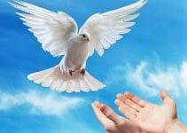 oraciones cortas para invocar al espiritu santo